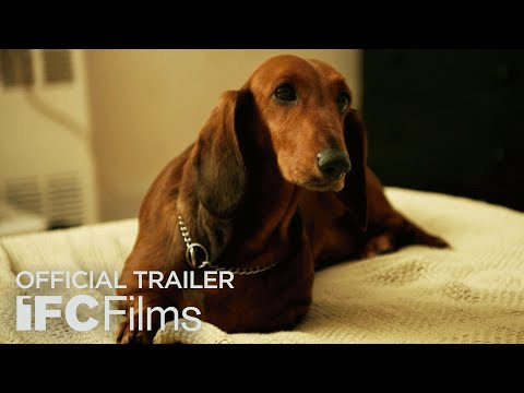 Trailer do filme Wiener-Dog