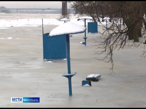 Волга и Которосль вышли из берегов: о затоплении узнали «Вести»