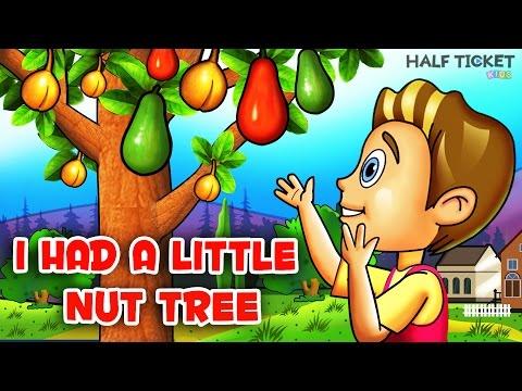 I Had A Little Nut Tree | Nursery Rhymes Songs With Lyrics | Kids Songs
