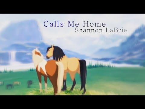 「 Calls Me Home 」Animash