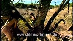Schulfilm: EVOLUTION - WIE WIR WURDEN WAS WIR SIND (DVD / Vorschau)
