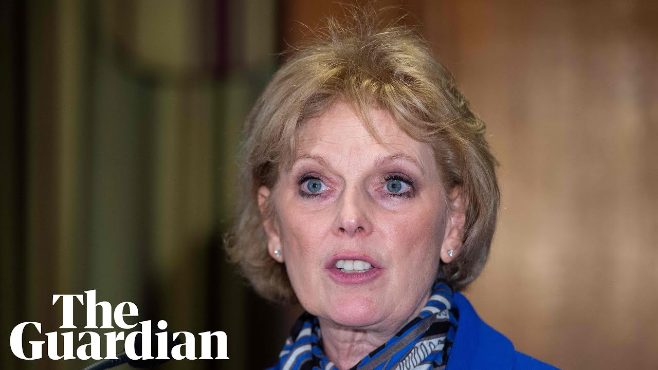 Tory modernising wing destroyed, says Anna Soubry