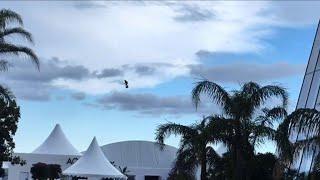Cannes: un skateur volant aperçu sur la Croisette