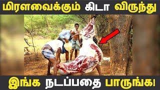 மிரளவைக்கும் கிடா விருந்து இங்க நடப்பதை பாருங்க! | Tamil News | Tamil Seithigal | Latest News
