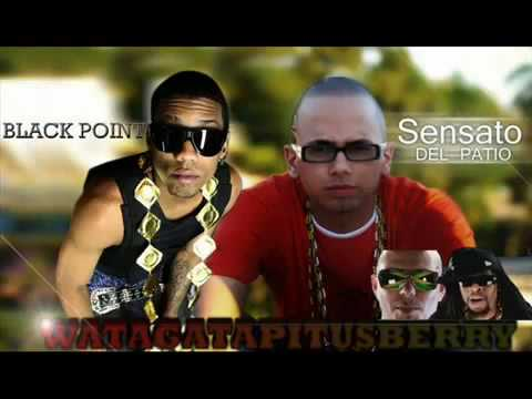 Black Point ft. Lil Jon and Pitbull - Watagatapitusberry Remix Official Video HD