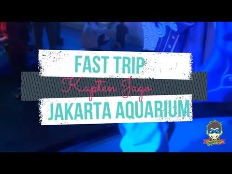 Fast Trip KAPTEN JAGO @JAKARTA AQUARIUM Neo Soho