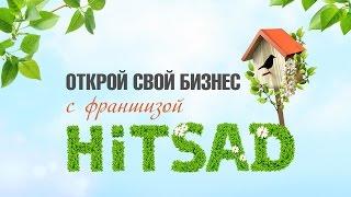 Франшиза HiTSAD ★Интернет магазин - как открыть бизнес ★ выбери бизнес под ключ