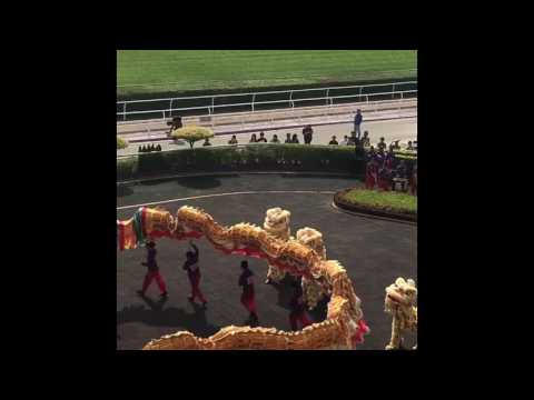 Macau Jockey Club: Best horseracing and betting entertainment in China | Travel Dejavu