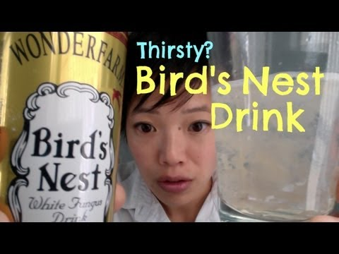 Tasting Bird's Nest Drink - Thirsty? #3