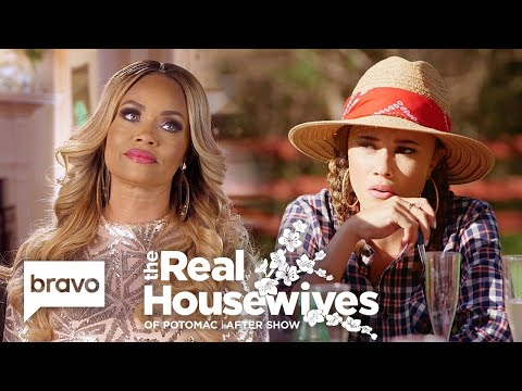 The Potomac 'Wives Break Down The Drama About Michael Darby | RHOP After Show (S4 Ep10)