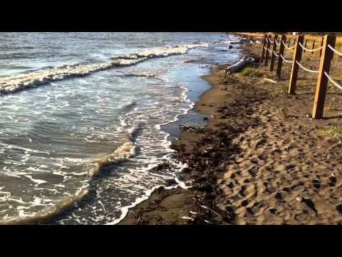 Cook Inlet Extreme Tide