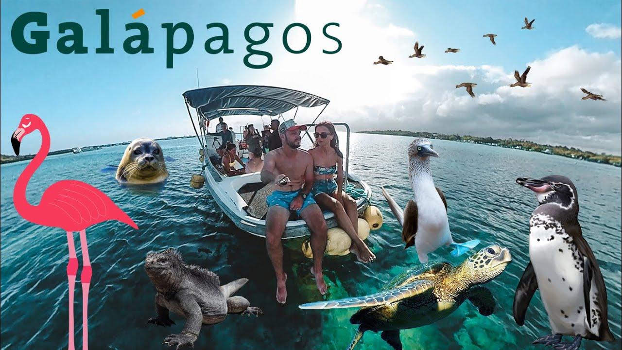 Romani, veniti in Galapagos! Uitati de Maldive si Dubai! Ce zi... ?