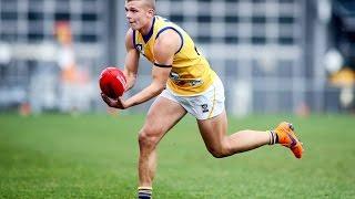 Brett Bewley v Footscray
