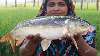 Village Food Pointed Gourd and Mirror Carp Fish Recipe Farm Fresh Pointed Gourd Curry Parwal Recipe