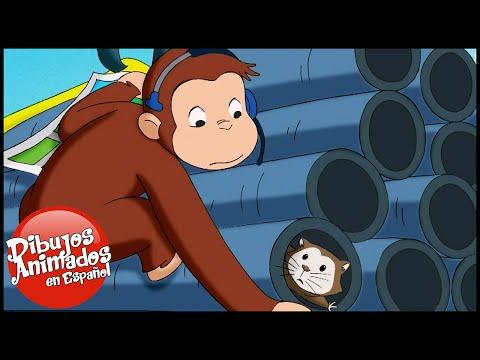 Jorge el Curioso en Español 🐵 La Cámara Hámster 🐵 Mono Jorge 🐵 Caricaturas para Niños