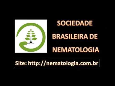 Resultado de imagem para sociedade brasileira nematologia