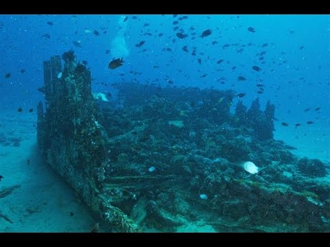 Shipwreck Scuba Diving in Romblon, Philippines Video