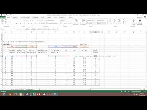 LIFE INSURANCE PROMOTION spss y LIFE INSURANCE PROMOTION excel