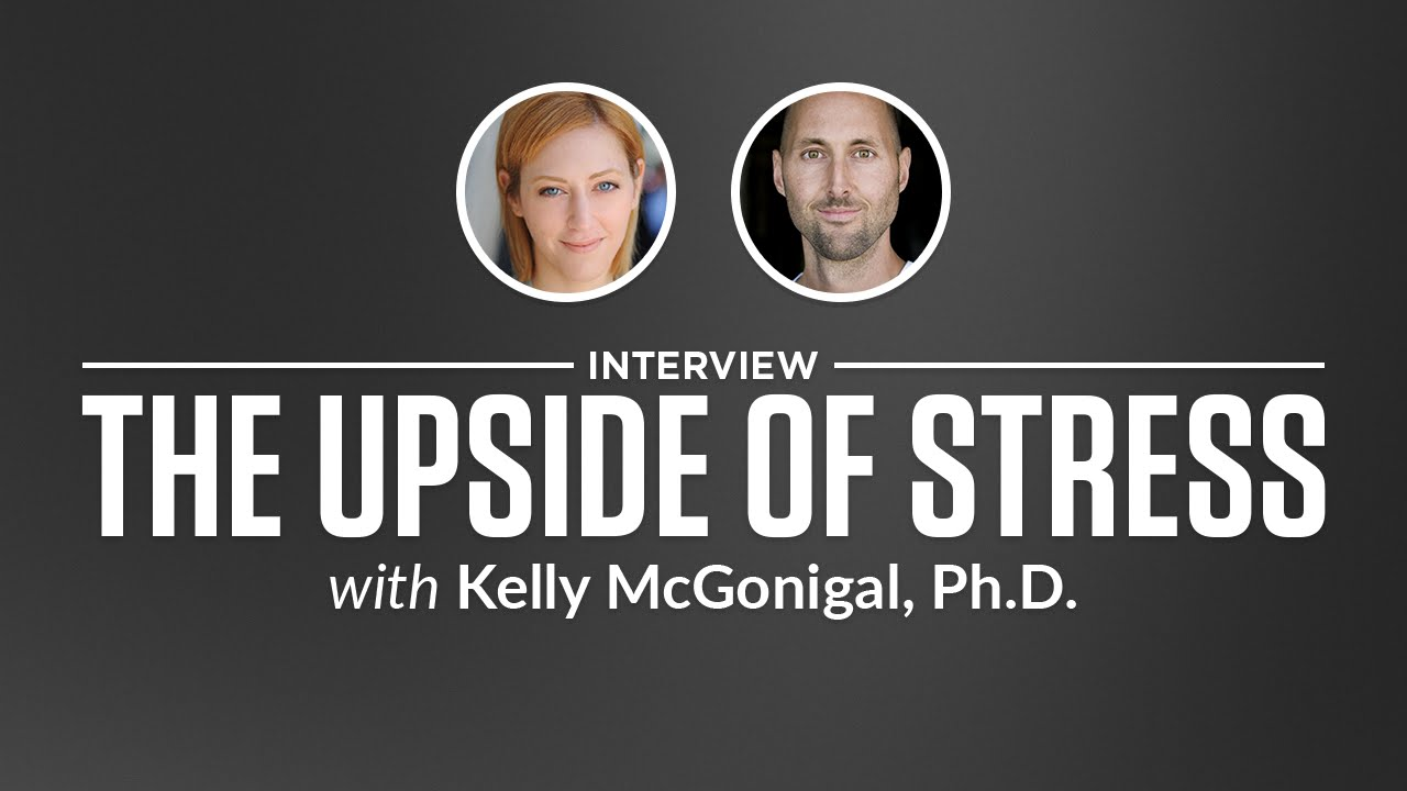 interview the upside of stress kelly mcgonigal phd interview the upside of stress kelly mcgonigal phd