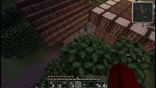 Dire Adventure Wolf 20 -Feed The Beast Minecraft w...