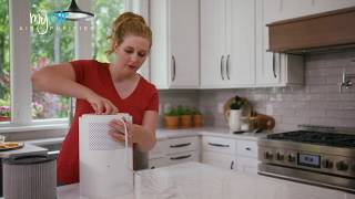 Overview Bissell Myair Personal Air Purifier Youtube