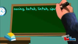 organ pernafasan haiwan