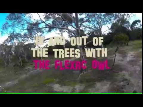 Flexrc OWL In in out of the trees