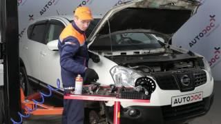 Kuinka vaihtaa jousijalan korjaussarja, etu iskunvaimentimet NISSAN QASHQAI 1 -merkkiseen autoon