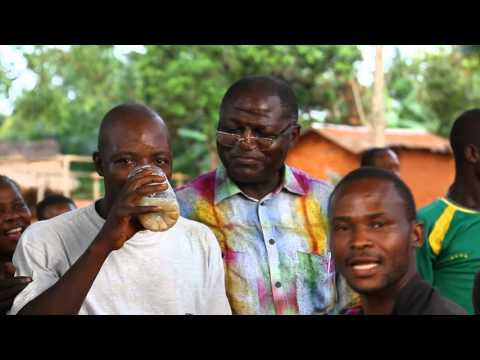 Campagne Bangui