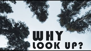 Why look up?