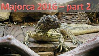 Visiting a Reptile Zoo! | Majorca (part 2)