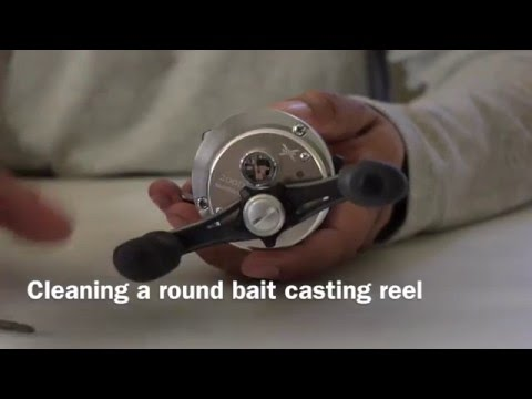 Basic cleaning and maintenance of a round bait casting reel. Shimano Calcutta 200D