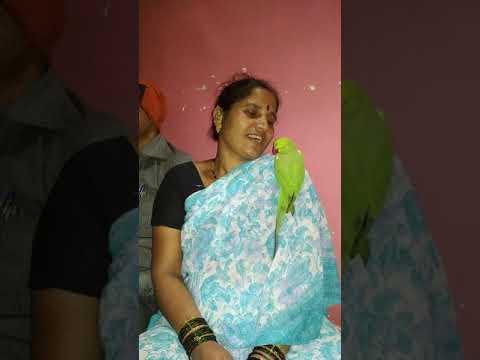 popat talking marathi