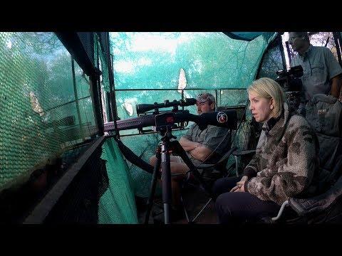 Shelley Giesecke's Debut Hunt In Africa
