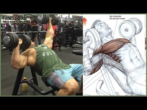 7 Chest Workout and Motivation, 7 Ejercicios de Pecho