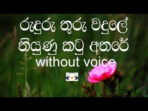 Ruduru Thuru Wadule Karaoke (without voice) රුදුරු තුරු වදුලේ