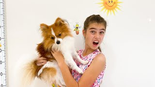 Nastya e Artem vão assistir seu filme favorito sobre como eles misturaram o cachorro