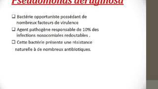 MICROBIOLOGIE PSEUDOMONAS