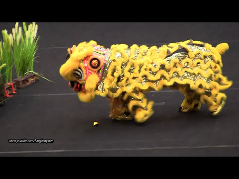 Traditional Southern Lion Dance on floor sets @ 4th Asian Dr