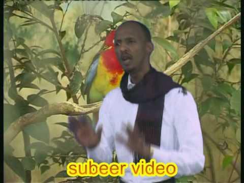 Abdirisaaq saleebaan gaas