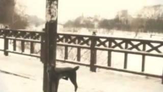 Вологда-Гда-Гда