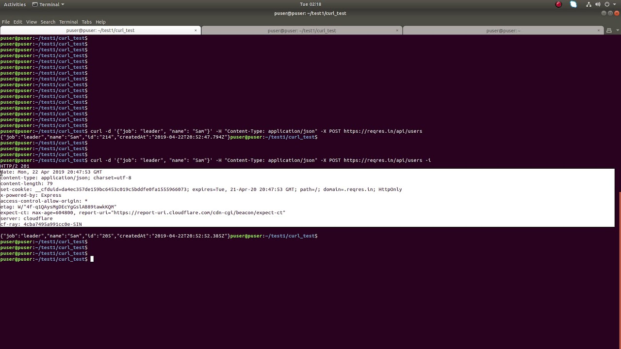 How to CURL Print HTTP Response Status Code 200 300 400 500 - 2019