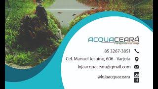 Acquaceará, a mais nova loja de aquarismo de  Fortaleza !