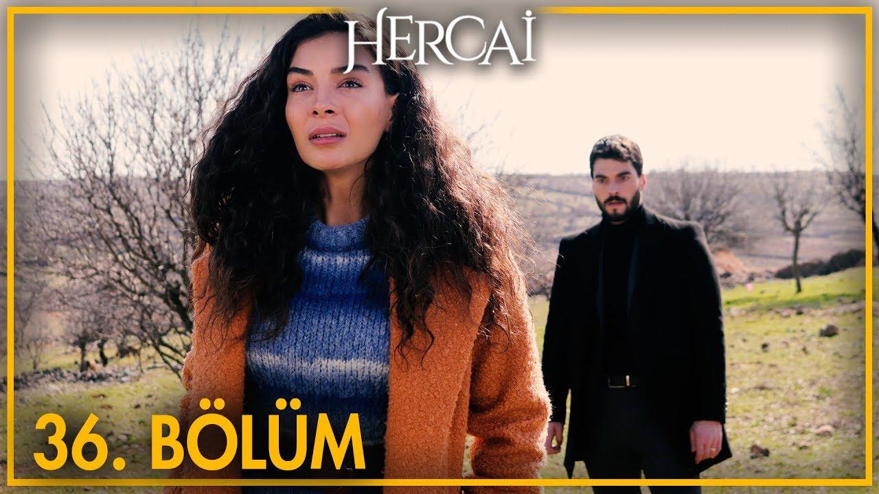 Download Hercai 36. Bölüm