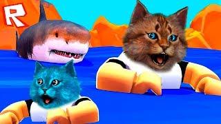 КОТ ПРОТИВ ГИГАНТСКОЙ АКУЛЫ! ROBLOX SharkBite Котик Игроман и Котёнок Лайк