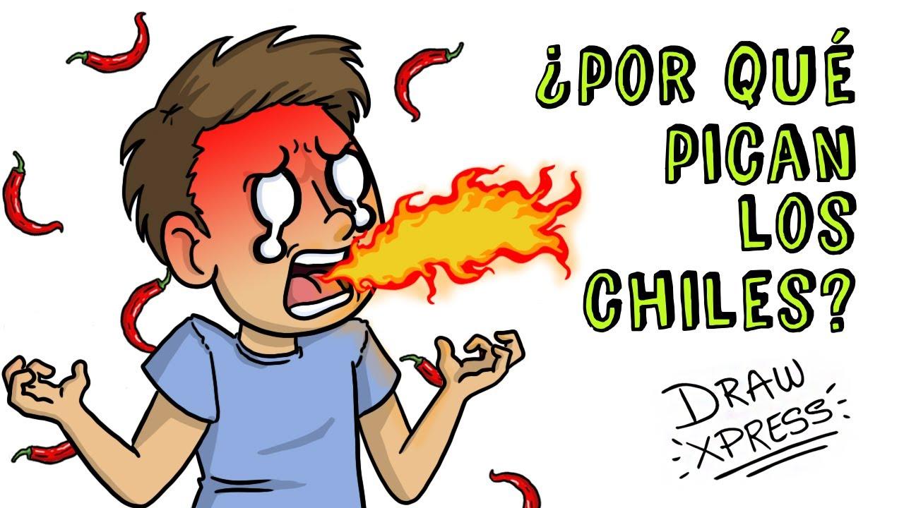 ¿POR QUÉ PICAN LOS CHILES? | Draw My Life