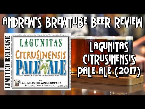 Lagunitas Citrusinensis Pale Ale (2017) - Andrew's BrewTube Beer Review #33