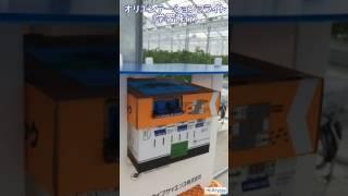 マルハナバチのオリエンテーションフライト(学習飛行)[アリスタ ライフサイエンス]