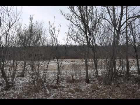 Hunting Camps For Rent... Nichols NY