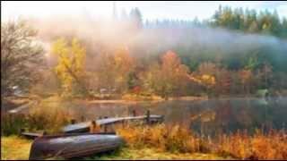 ( 薩克斯風全長版)30首天籟輕音樂-每天調心洗滌心性-自然昇華-正能量-...
